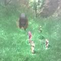 Äkkiä metsästä ilmestyi valtava karhu!
