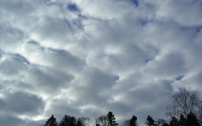 Aloittelevan pilvibongarin opas