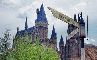 Vad gör man efter Hogwarts?