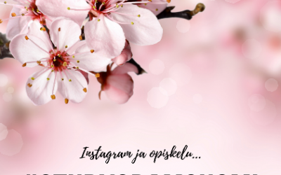 #Studygram eli kuinka Instagram liittyy opiskeluun? Nörttitytöt vastaavat!