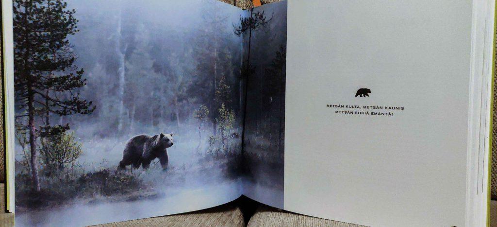 Kuva karhusta kirjan sivulla.