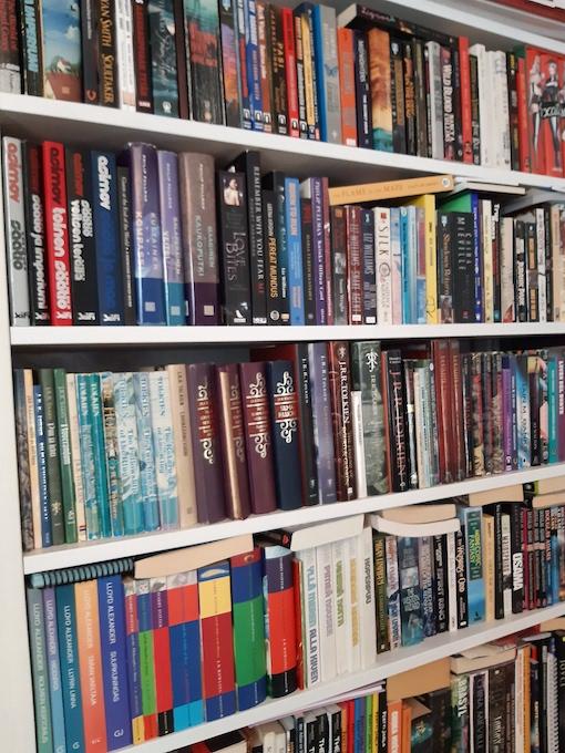 Kuvassa kirjahylly