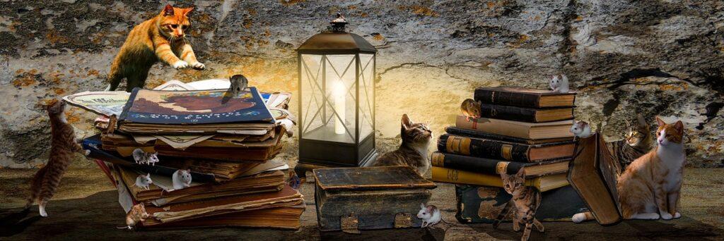 Kuvituskuva kissoista ja hiiristä kirjojen seassa.