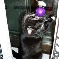 Kuole, pahuuden joulupallo!!